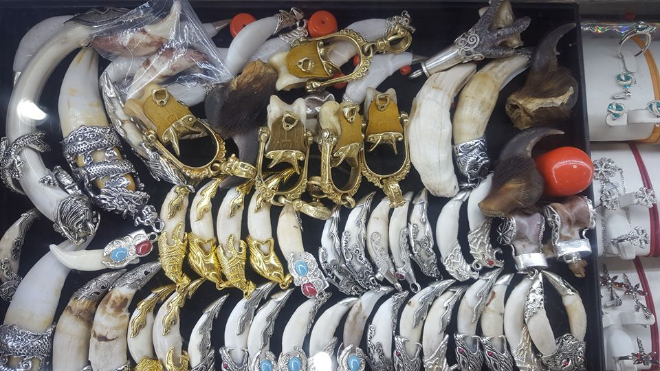 Ховор амьтан, ургамлын гаралтай эд хэрэгсэл, бэлэг дурсгалын зүйл худалдан авахгүй байхыг анхааруулж байна